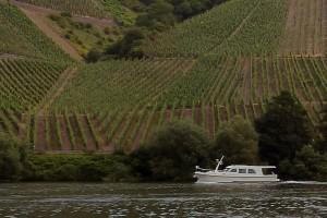 Wijngaarden voorbij Schweig